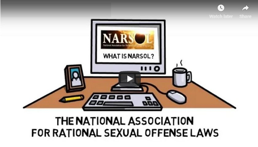 What is NARSOL?